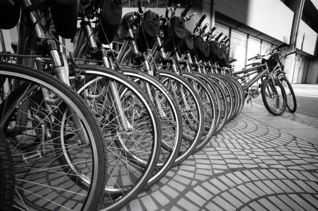 Rack-Full-o-Bikes